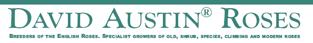 DavidAustinRoses_uk_logo
