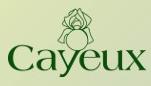 cayeux_iris